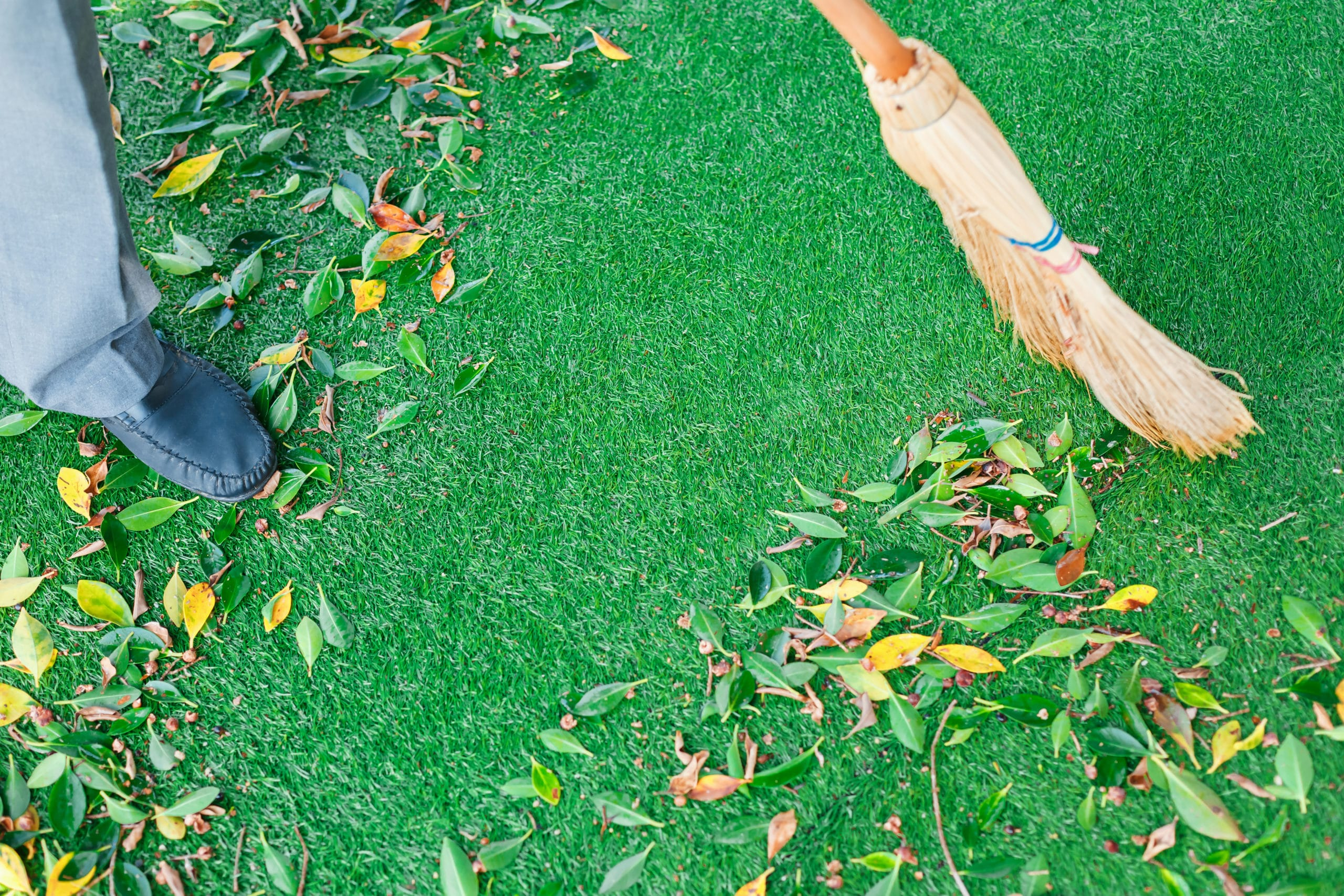 Deep Cleaning Your Artificial Turf